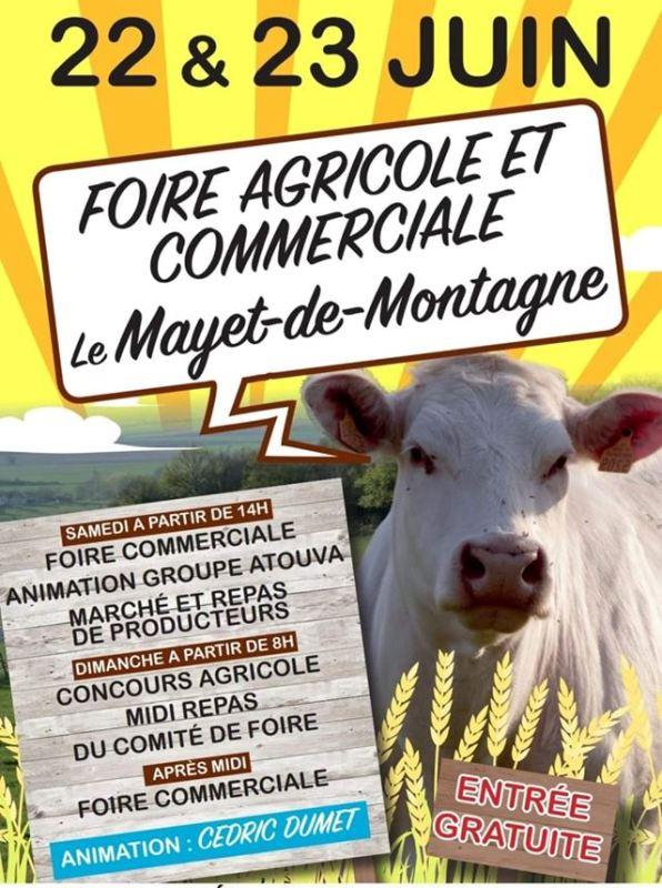 foire agricole mayet 2019
