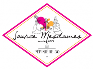 logo source mesdames